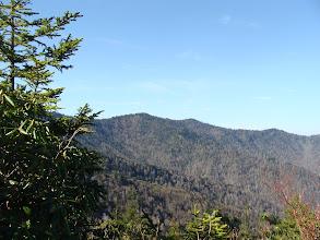 Photo: Snake Den Ridge Trail