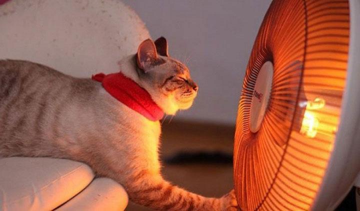 Как выбрать тепловентилятор для дома?