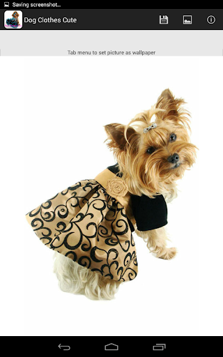 狗衣服可愛