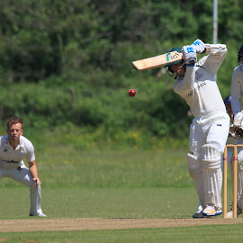 by John Davies - Sports & Fitness Cricket ( cricket, university cricket )
