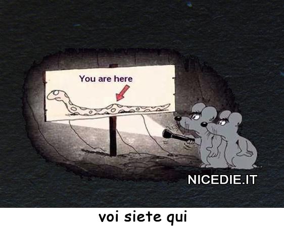 """due topolini accendono una torcia e sulla mappa c'è un serpente, sul bozzo c'è scritto """"voi siete qui"""""""