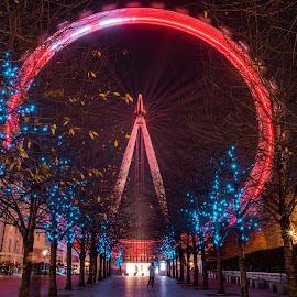 by Balan Gratian - City,  Street & Park  City Parks ( london, the eye, london eye, the eye in the night, london night )