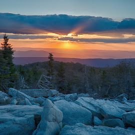Dolly Sods Sunrise by Jack Nevitt - Landscapes Mountains & Hills ( dolly sods, sunrise, wilderness area, west virginia, bear rocks )