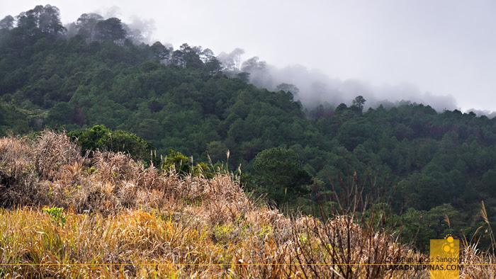 Maligcong Bontoc