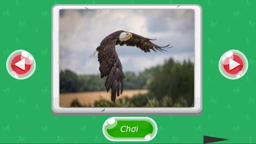 Xếp hình động vật screenshot 1