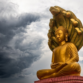Buddha Facing the Storm. by D L - Buildings & Architecture Statues & Monuments ( buddah, spring, mn, storm, watt munisotaram, minnesota, buddha, buddhist, rural, temple, religion )