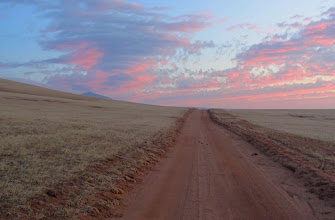 Photo: Birding Sunrise, on the Ranch in the Antelope Valley - Greg Smith