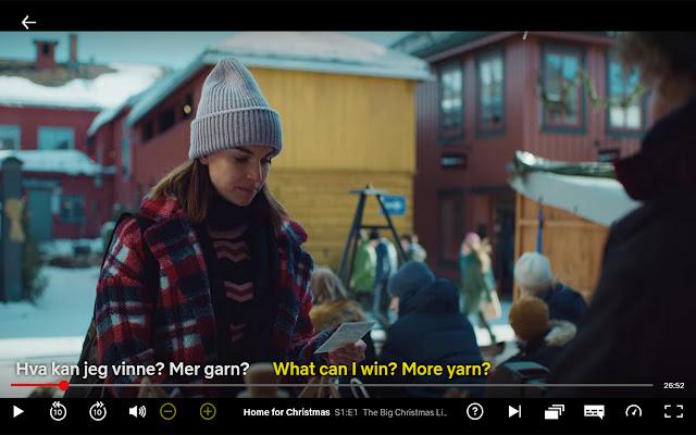 Dual Subtitles for Netflix