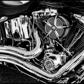 Motorcycle by Dave Lipchen - Black & White Objects & Still Life