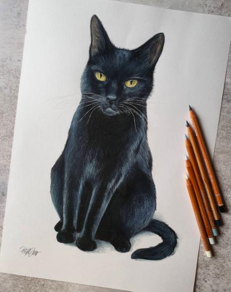 black cat drawing