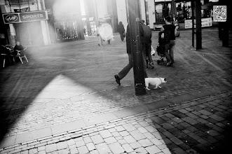 "Photo: Who walks who?<a href=""http://matthewmaber.com/"">Blog</a> · <a href=""http://www.flickr.com/photos/somefool/"">Flickr</a> · <a href=""http://500px.com/MatthewMaber"">500px</a> · <a href=""http://gplus.to/mattmaber"">g+</a> · <a href=""https://www.facebook.com/mattmaberphotog"">Facebook</a> · <a href=""http://www.twitter.com/mattmaber"">Twitter</a><br/>FujiFilm X100 · Nikon D90 (Nikkor 35mm f1.8, Sigma 10-20mm, Tamron 28-75mm f2.8)"