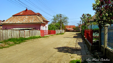 Photo: 2012.05.01