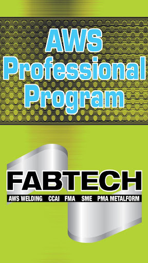 AWS Professional Program