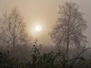 Photo: Rūkas Tamsa, drėgmė, šaltis ir Mirtis – visa tai dera...