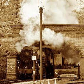 Home on leave by Chris Duffy - Transportation Trains ( soldier, engine, train, tracks, bridge, steam )