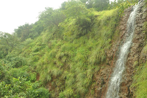 Our very waterfall