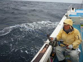 Photo: 「正月の魚、一匹でよか~っ」 謙虚なオガワさん。