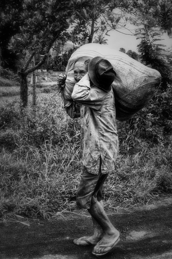keep working by Avendri Maingkolang - News & Events World Events ( old man, working )