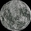 CryptoSnake Coins