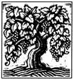 Logo for Robert Biale Vineyards Black Chicken Zinfandel