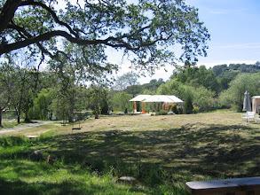 Photo: Yoga Farm, CA - oak tree to krishna platform