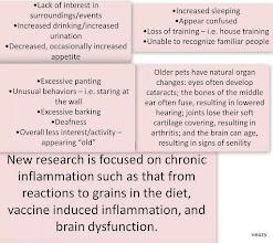 Photo: SYMPTOMS OF BRAIN DYSFUNCTION
