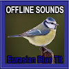 Eurasian Blue Tit Bird Sounds APK