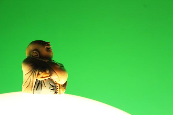 Buddha di velo_di_maya