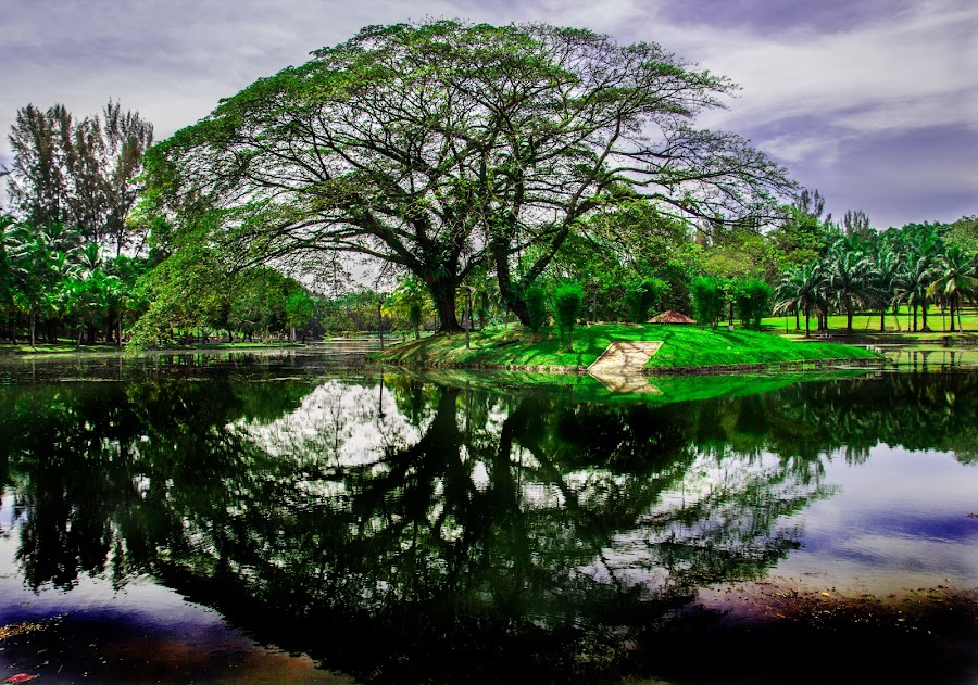 Permaisuri Lake by Nazri Suriayana - Landscapes Waterscapes