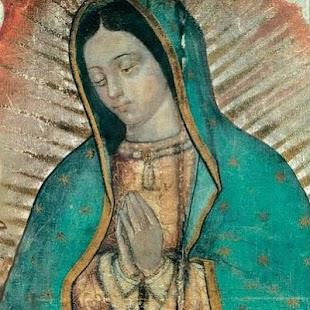 Download La Reina de Mexico For PC Windows and Mac apk screenshot 1