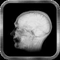 Brain Scan Live Wallpaper icon