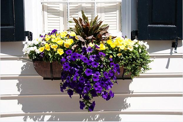 Window Box Planter Ideas - Android Apps on Google Play