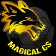 Magical Correct Score Tips icon