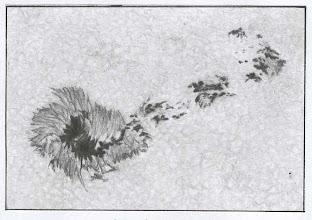 """Photo: Tache et """"micro taches"""", le 25 avril 2004 vers 9H TU, dans la lunette de 200mm à 150X en bino, filtre Astrosolar."""