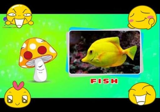 Sea Animals Songs For Children