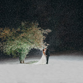 The Love Tree :)   by Kaspars Sarovarcenko - Wedding Bride & Groom ( wedding photography ireland )