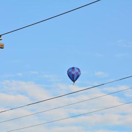 Floating away by Thomas Fitzrandolph - Transportation Other ( flight, aircraft, niagara county ny, nikon d5200, balloons, lockport ny )