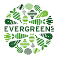 Evergreens Salad APK