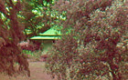 external image sNopJTiyFZq-Ha0lb6oTzCwSMJggTR8wJQfQEQnHtsBQRUgGIZNk0kXAHqn7eLbr-szSrVLe9NpU5KgTcP8tNGVpyKJxR-aZCsBVbVtRPjeGQF8ALmotVBhmtdVlPbxu09y2co5uyfM7mjfeavSePUtYY8ru5O5kSoqQFA6xRcBha80w5Ab5pcNerCmGzYgUVdMLDNbex0sdDGO5OQmn-1l7rHq6kB2KS7lTMlzDYDw4kkEpma-ObwjUv72aBHxi-I7z5YhhDK5lODVy4mKtSZoBx9xUXj3fjRfRJRlAvFwU3fHyFINs0r3SaVT34qyAZLb8QdL0Ph36LVnaur2YhaoDuN8vl6DC4s7Zdj2lULo7MhdTDCkjPOUCdVzrXKlKmN3bjESFUHzbWM-R7NXUWfarf01oaDxUhZI535CgVjBdmELZ2EC-zvTPs1_nNMCHePMTWr7gM_rrEqJ1F9YMDOsZ_tOlkPsxLe3bxh0UdQv6NQpmEYvCXMwTHR2znF1UGxc6LFTfqA-apg1BnDaRdZd-qW-hxuz6n7LifdgMlD1jmW_KsKUfThqRGVbqaW5qgtcRyY_by-nQU-PBZLCqfhKhCq_F0QFQbKTFsppBji9DxH9TZA=w140-h88-no