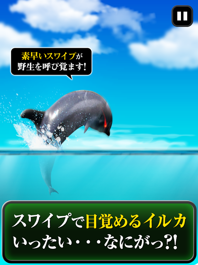 Can Dolphin Stand?- screenshot