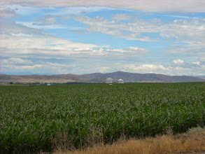 Photo: day 8 Baker OR to Fruitland ID More corn