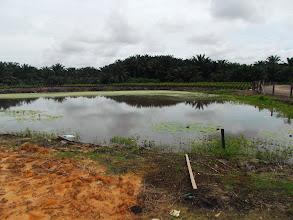Photo: Antara kolam semulajadi yang masih dipelihara. Teringat pula Water Analysis masa dulu2, ehe.