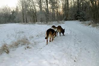 Photo: Hej och hå, mot skogen vi gå :-)