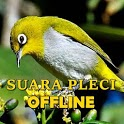 Kicau Suara Burung Pleci Gacor MP3 Offline icon