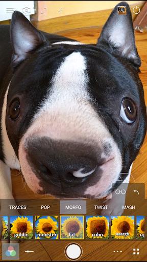 Cameringo Lite 特效相机|玩攝影App免費|玩APPs