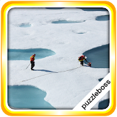 Jigsaw Puzzles: Arctic
