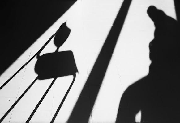 pensieri in ombra di Samuele Tronchi