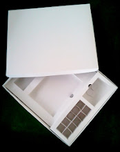 Photo: Caixa (19) Especial Multi-uso - Semi aberta (vários compartimentos internos).