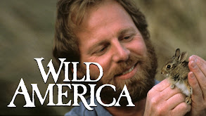 Wild America thumbnail