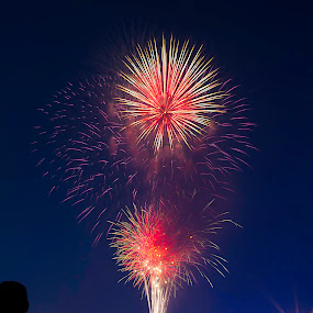Let Freedom Ring by Amy Spurgeon - City,  Street & Park  Vistas ( silhouette, fireworks, independence day )